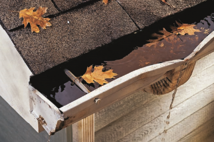 gutters cleaning services